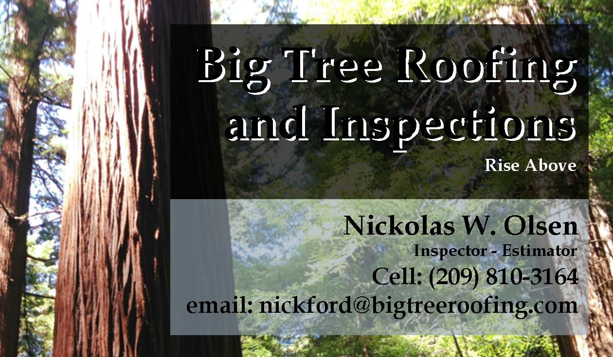 Big Tree Roofing
